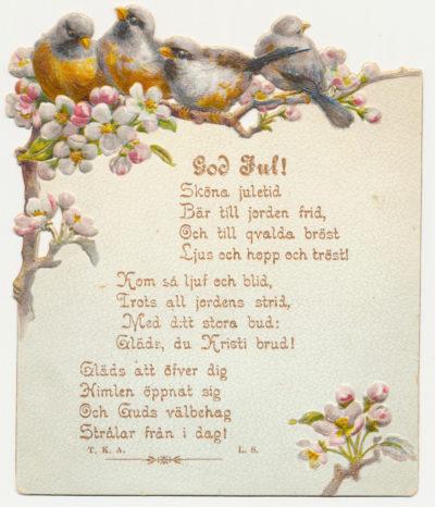 2 Äppelblom och fågelkvitter